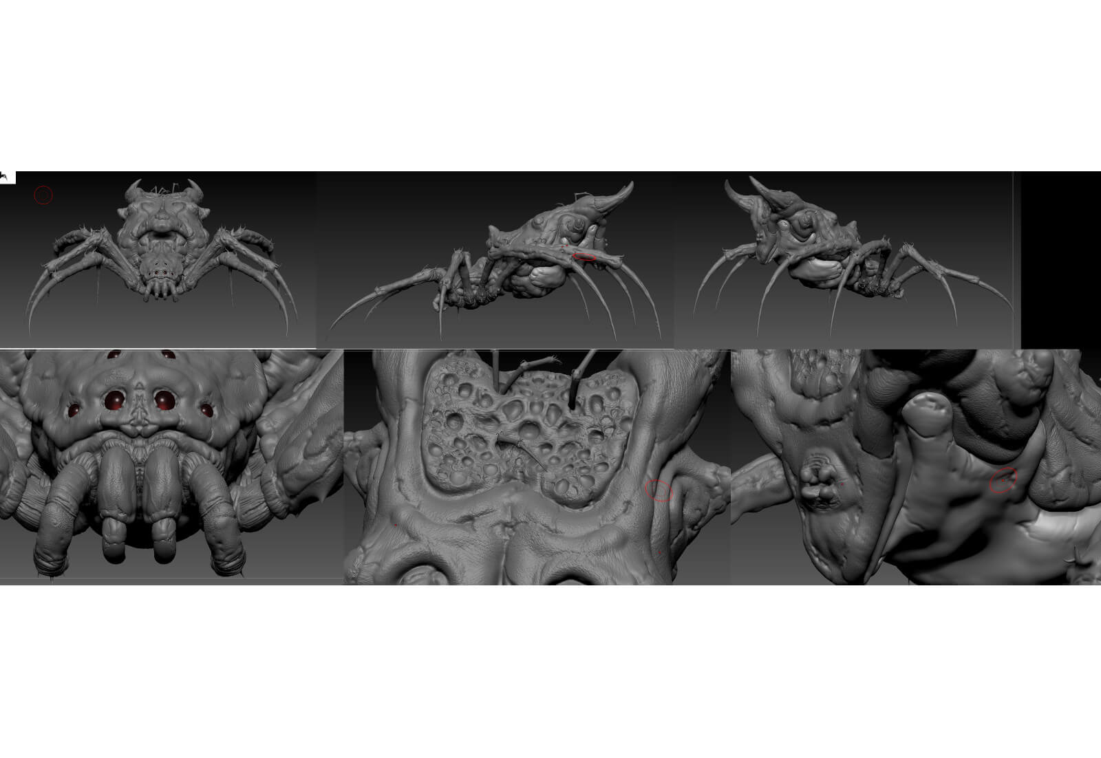 Multiple angles of 3D spider model