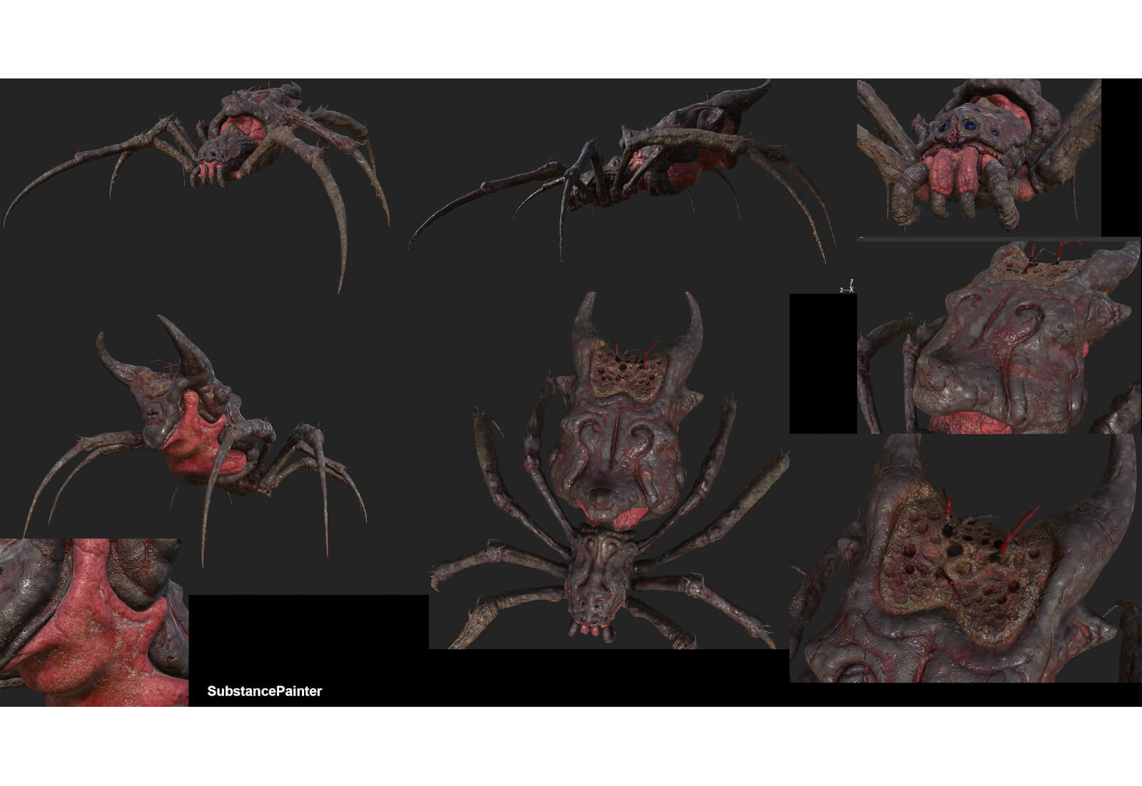 Multiple angles of 3D spider model with painted textures