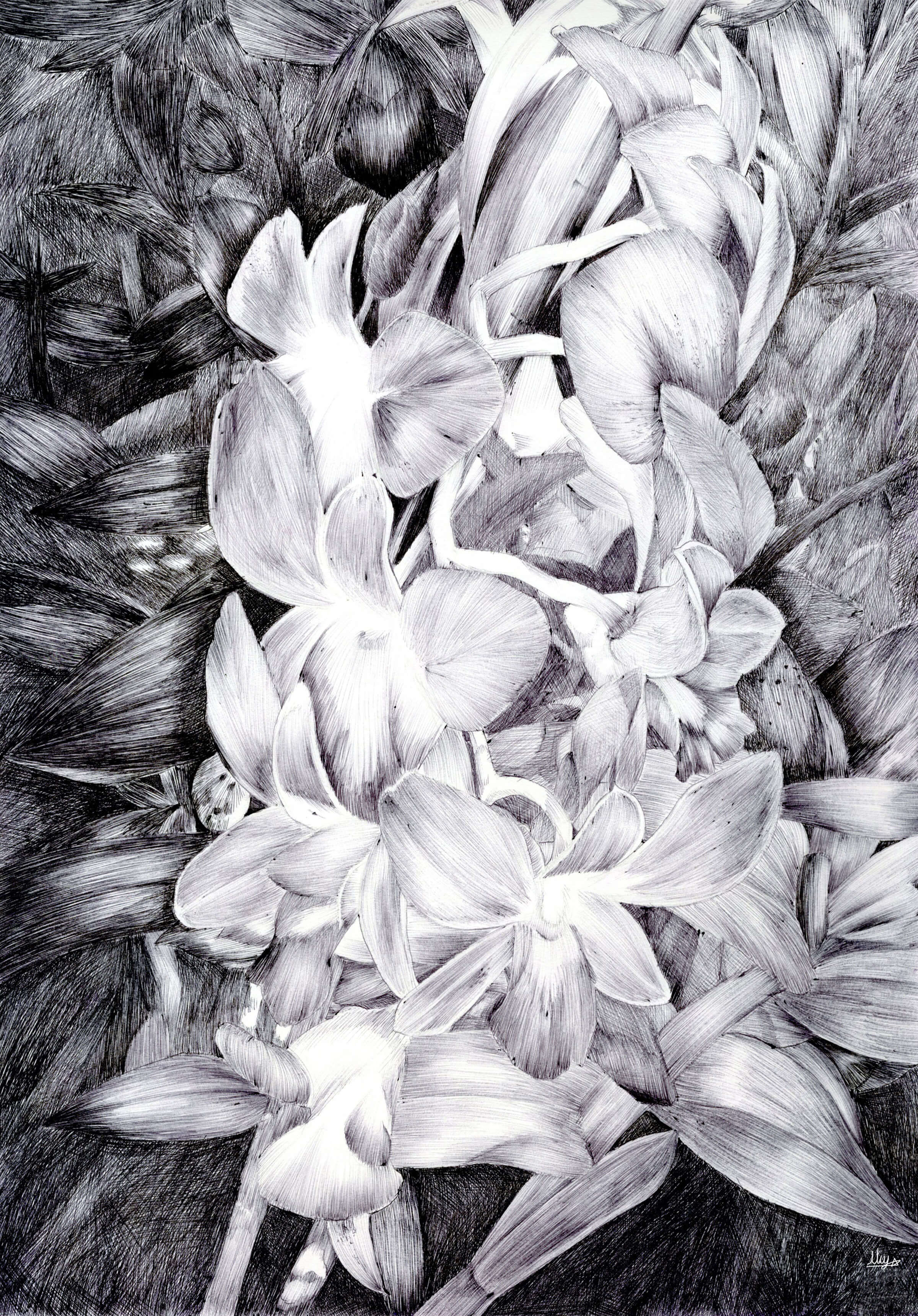 Black-and-white sketch of a garland of flowers.