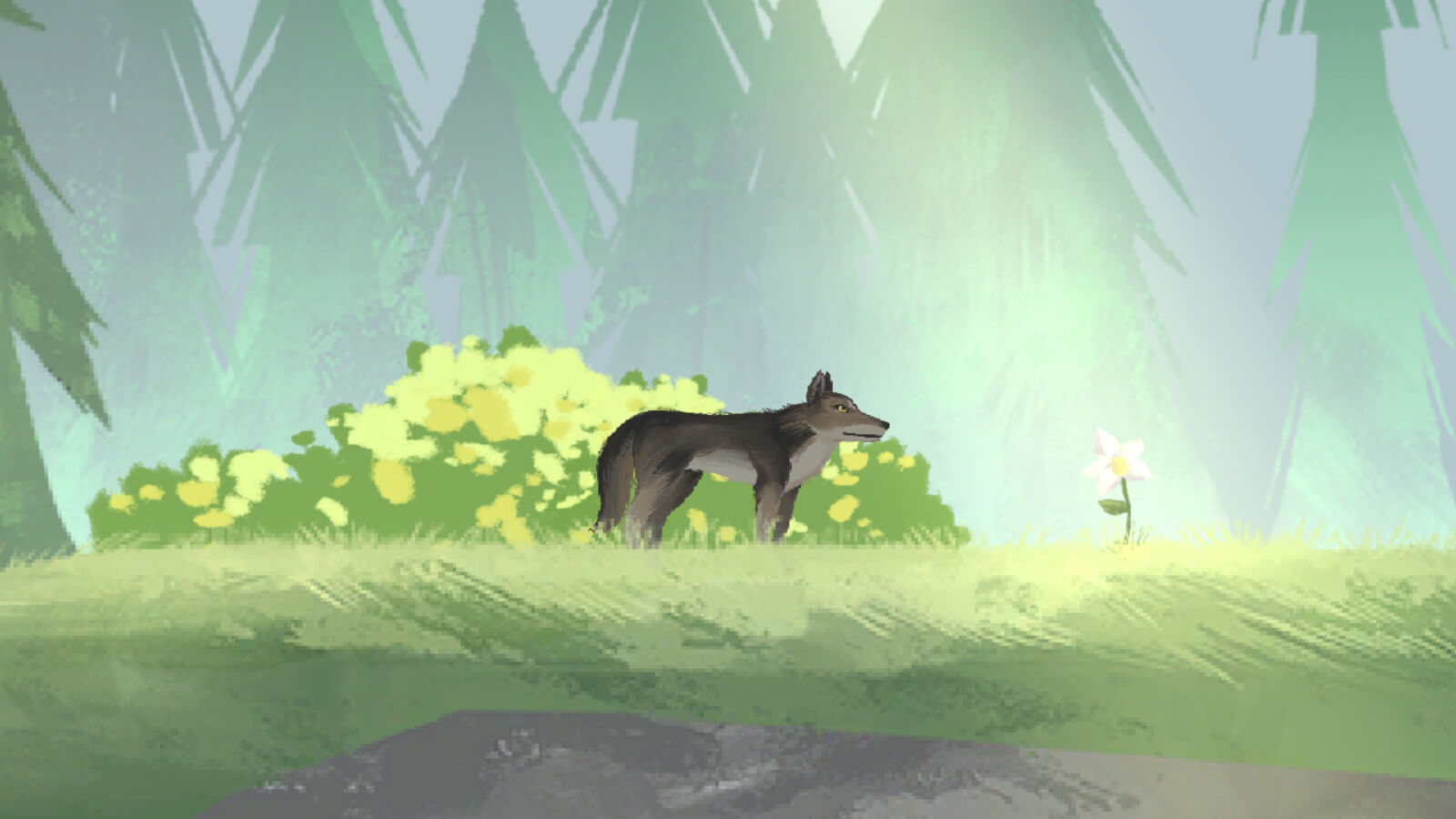 A wolf standing in a green grassy meadow with sunlight shining down