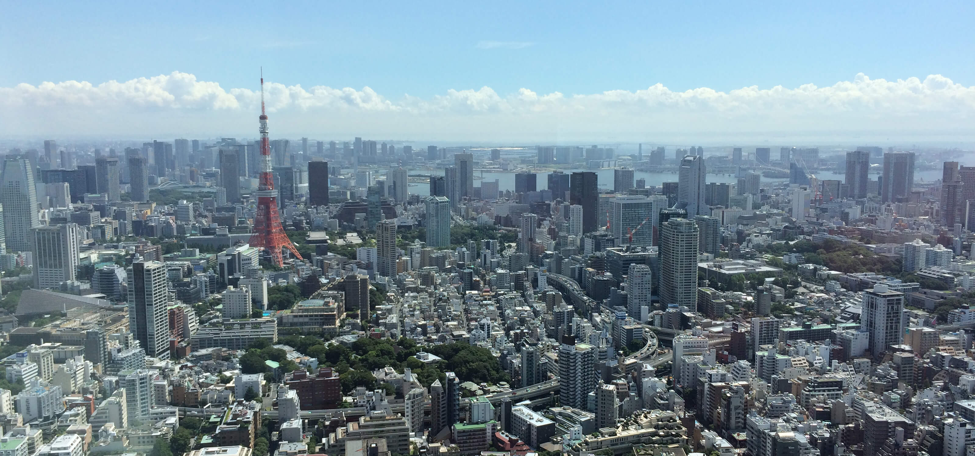 Photograph of the Tokyo skyline taken from a tall building